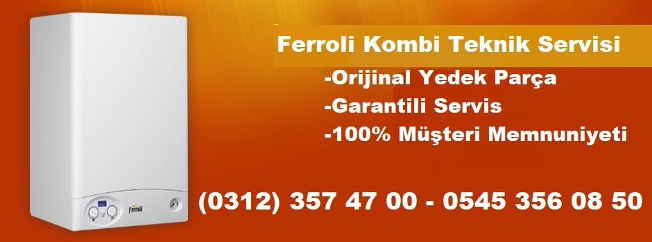 ferroli-kombi